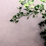 新所沢の埼玉住建 埼玉住建 SJ デザインにこだわったリフォーム.リノベーション DIY 空間演出 漆喰塗装の写真